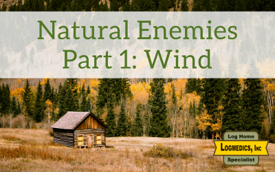 Natural Enemies Part 1: Wind
