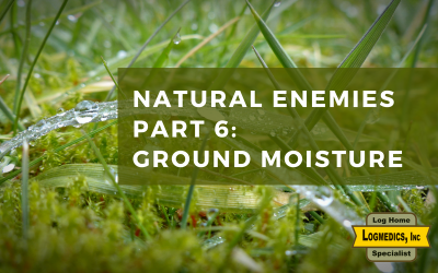 Natural Enemies Part 6: Ground Moisture