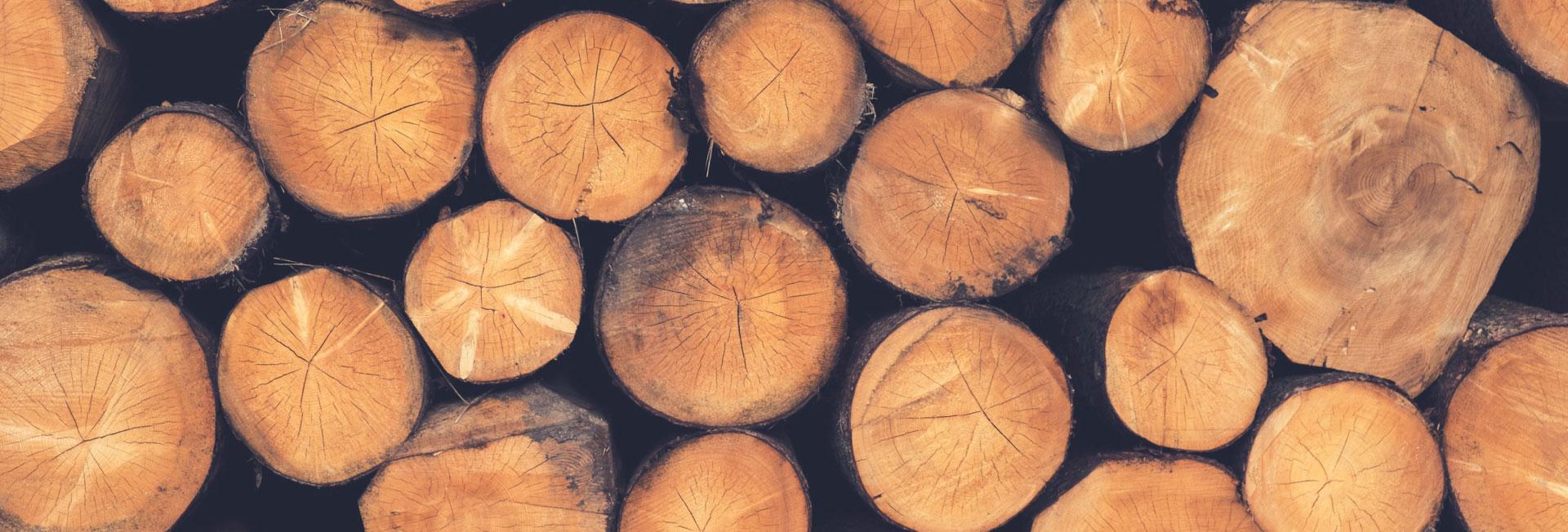 log restoration